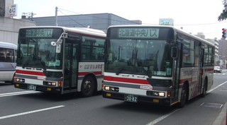3082and3083.JPG